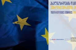 Policy Forum on Public Attitudes towards European Integration and the State Communication Strategy