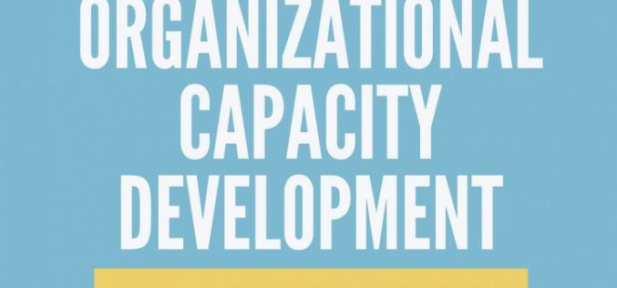 Capacity Development Assistance Program for Georgian CSOs